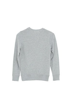 I dig Denim Wayne sweater grey melange