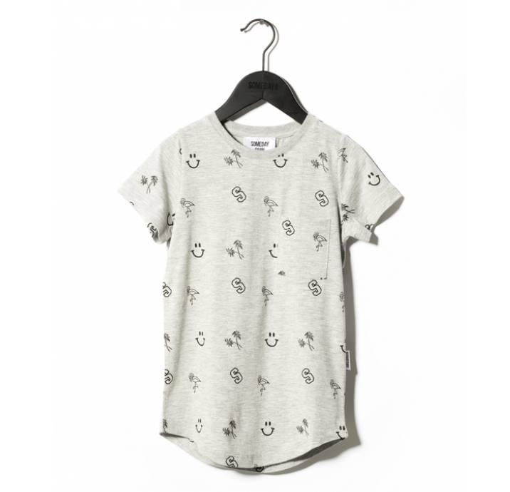 Someday Soon River t-shirt grijs