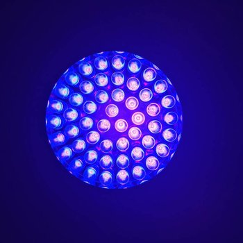 UV Flashlight 51 LEDS