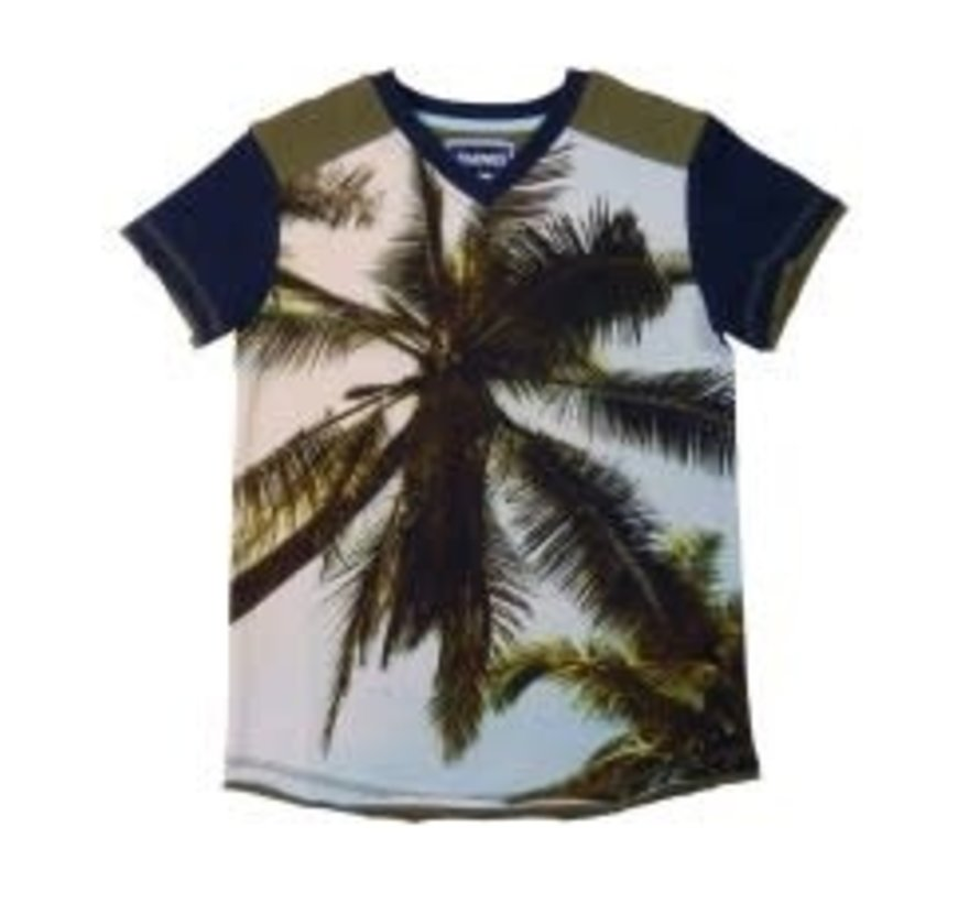 leggend 22 T shirt palmtree