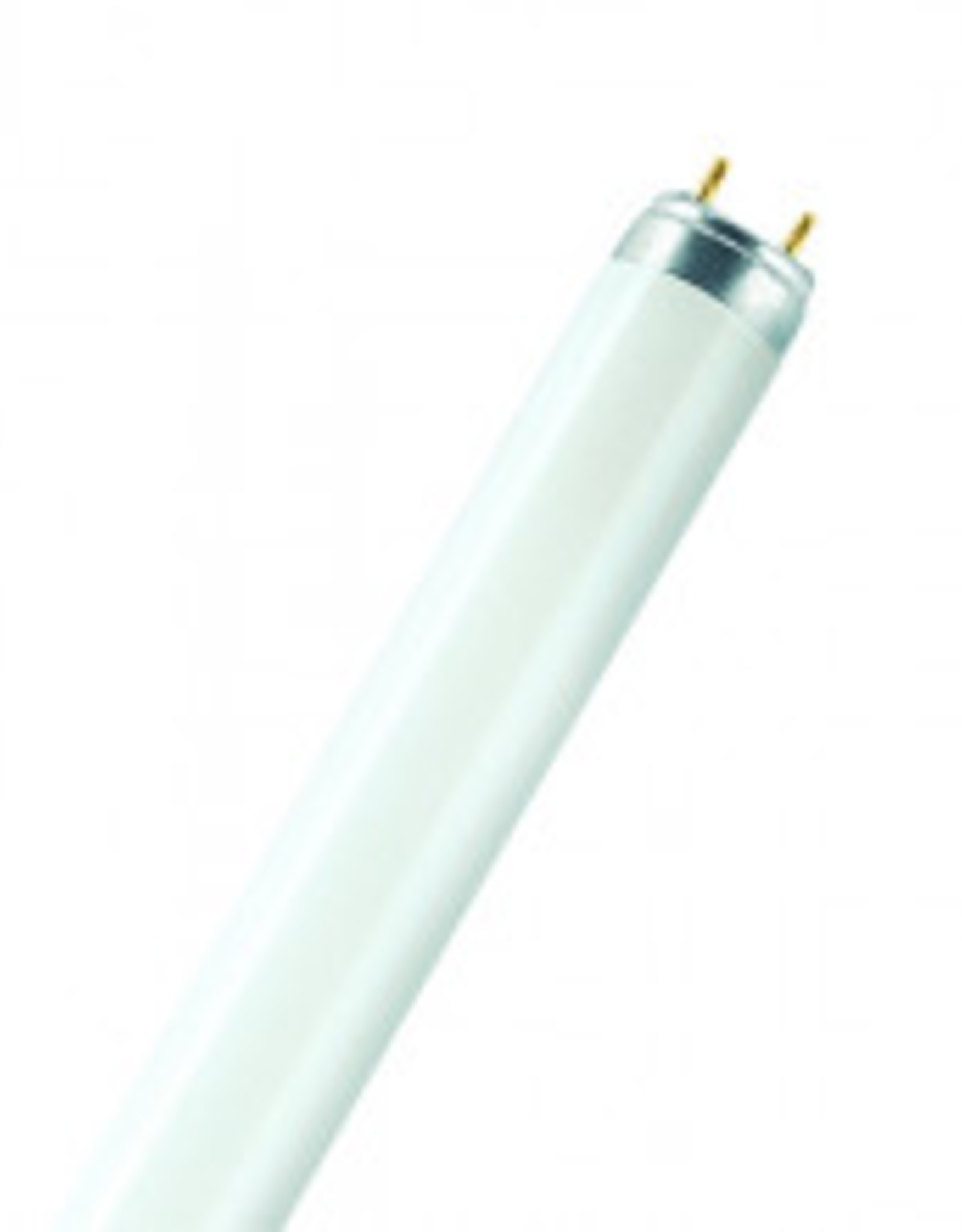 Lamp T8/G13 18W / 840