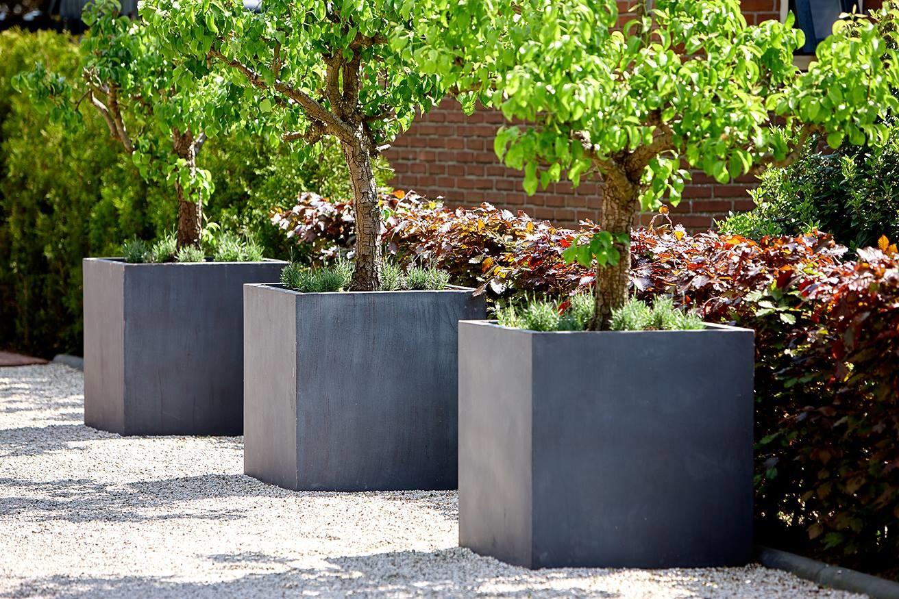 Grote vierkante zwarte plantenbak