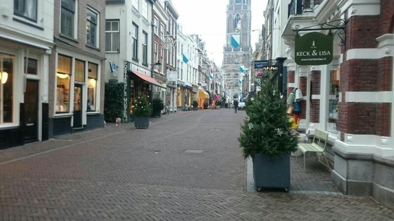 Plantenbak kerstboom