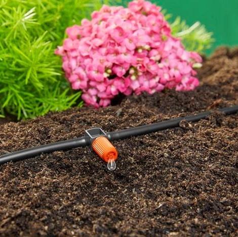 Planten water geven in je plantenbak. 10 tips voor warme dagen!