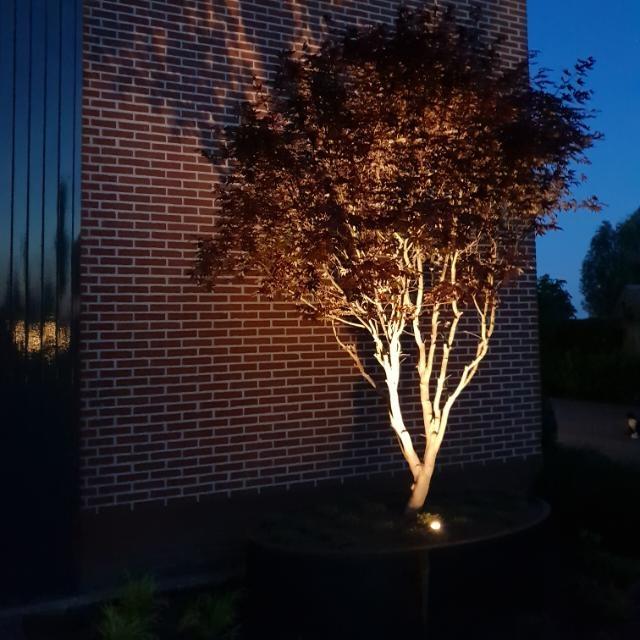Cortenstaal plantenbak verlichting boom