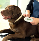 Sure petcare Chipreader SureSense