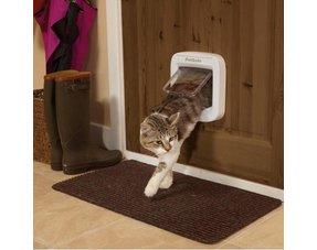 Kattenluik