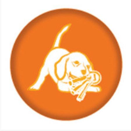 Nylabone Flexible puppy teething pacifier N330