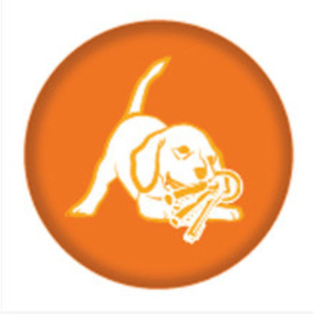 Nylabone Puppy Chew Bone maat S