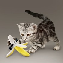 Better Buzz Banana