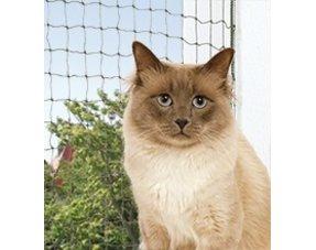 Katten netten