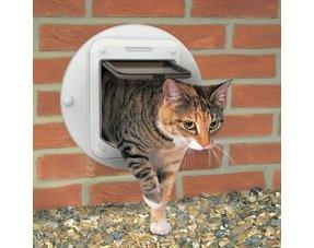Kattenluik in muur