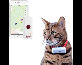 GPS tracker kat en hond