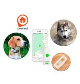 Weenect GPS tracker voor honden