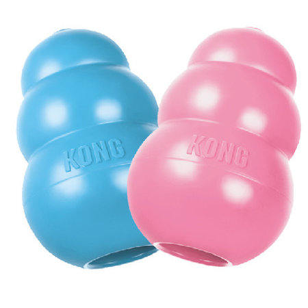 kong Speeltje pup medium blauw of roze