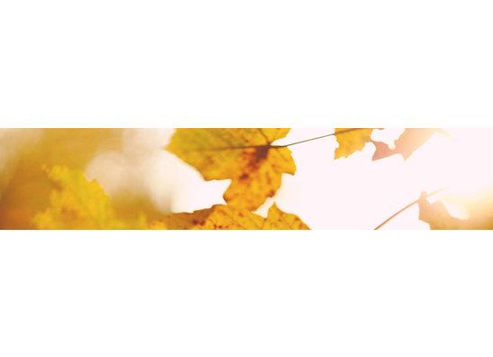 Herbstlich genießen
