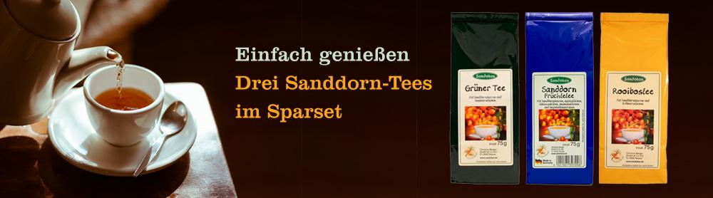 Sanddorn-Tees im 3er-Sparset
