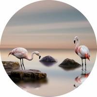 Glas schilderij rond Flamingo's diameter 80cm