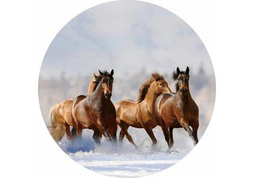 Glas schilderij rond Paarden diameter 80cm