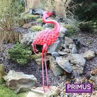 Figuur 3d Flamingo vooruit kijkend