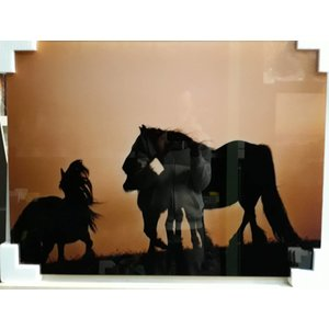 MondiArt Glasschilderij Paarden 60x80cm