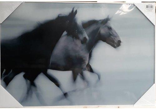 Glasschilderij 2 Paarden 60x90cm