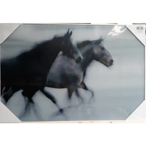 MondiArt Glasschilderij 2 Paarden 60x90cm