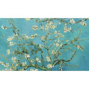 Dibond schilderij Amandel bloesem 118x70cm