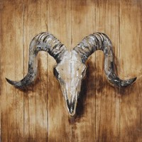 Olieverf schilderij Steenbok 60x60cm