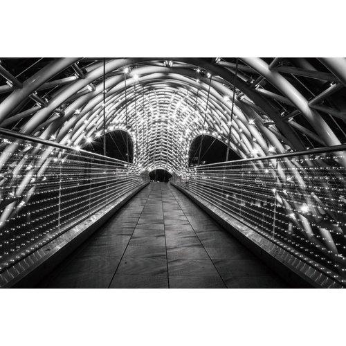 Foto glas schilderij RVS 80x120cm