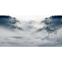 Dibond schilderij 98x49cm Icy