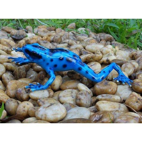 Eliassen Bronzen beeld regenwoud kikker blauw