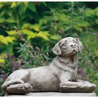 Tuinbeeld middelmaat Labrador hond