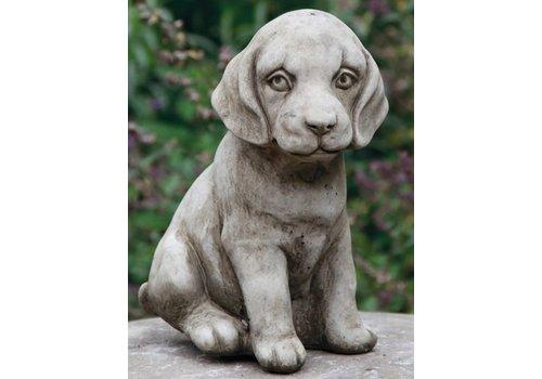 Tuinbeeld kleine zittende puppy