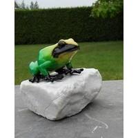 bronzen kikker op een steen groen