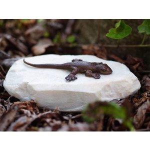 Eliassen Beeldje brons hagedis op steen