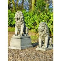 Beeld fantasy zittende leeuw
