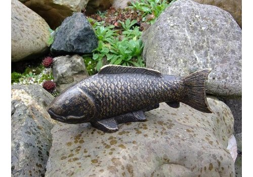 Spuitfiguur brons vis
