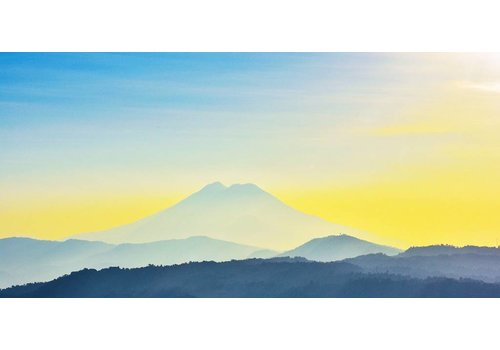 Schilderij dibond Yellow 98x48cm