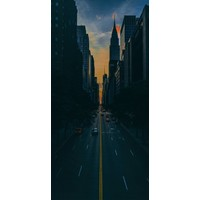 Schilderij dibond rvs  Stad 98x48cm