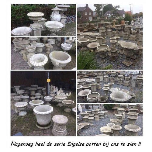 Dragonstone Pot Fern dragonstone