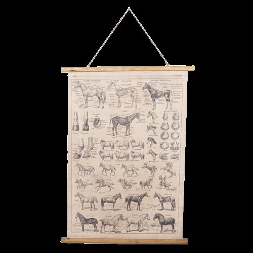 Eliassen Wandkaart Paarden 100x75cm