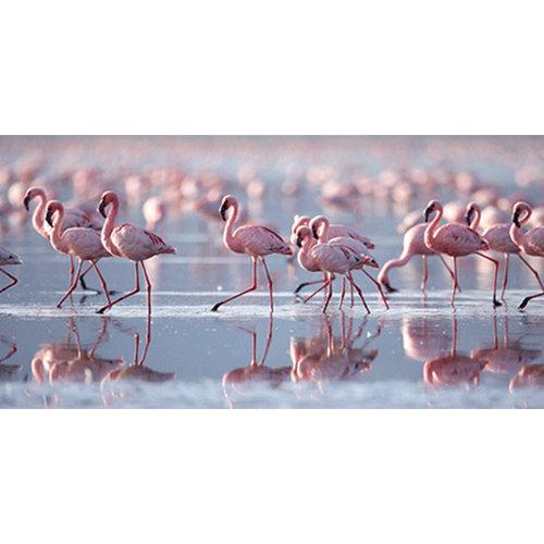 Glasschilderij Flamingo's 75x150cm.