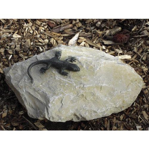 Bronzen hagedis op rots