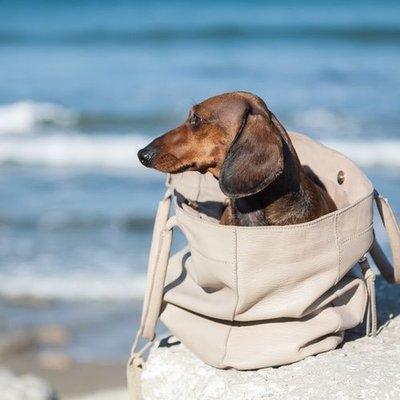 Hundetasche / Hundebeutel