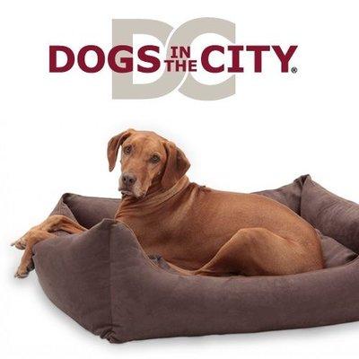 Dogs in the City Hundebett