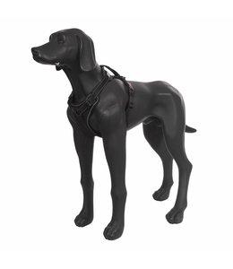 Rukka - Hundegeschirr Solid