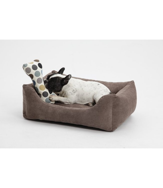 Dogs in the City - Box Bed Madison braun