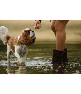 dubarry of Ireland - Ankle Boot Roscommon