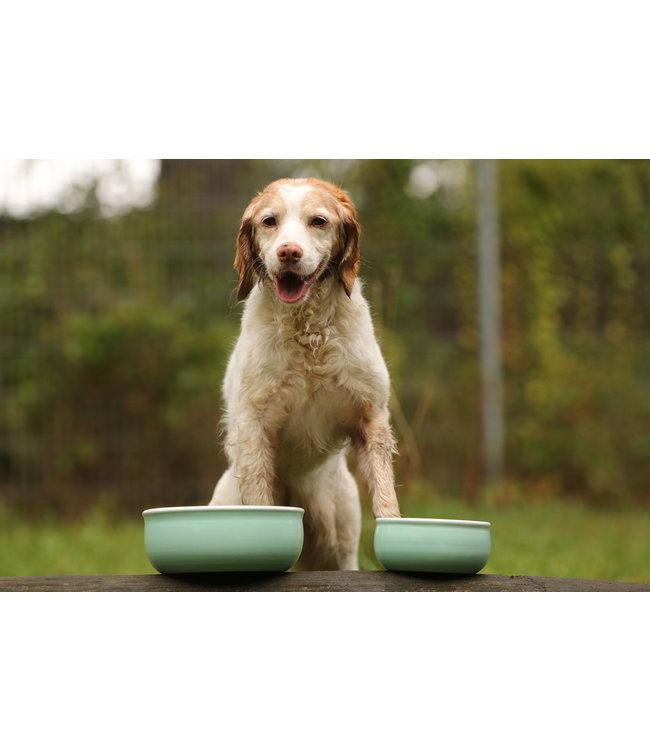 Flöckchens - Keramik Hundenapf Mint